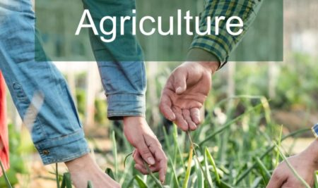 MSc Agriculture Career and Scope 2021