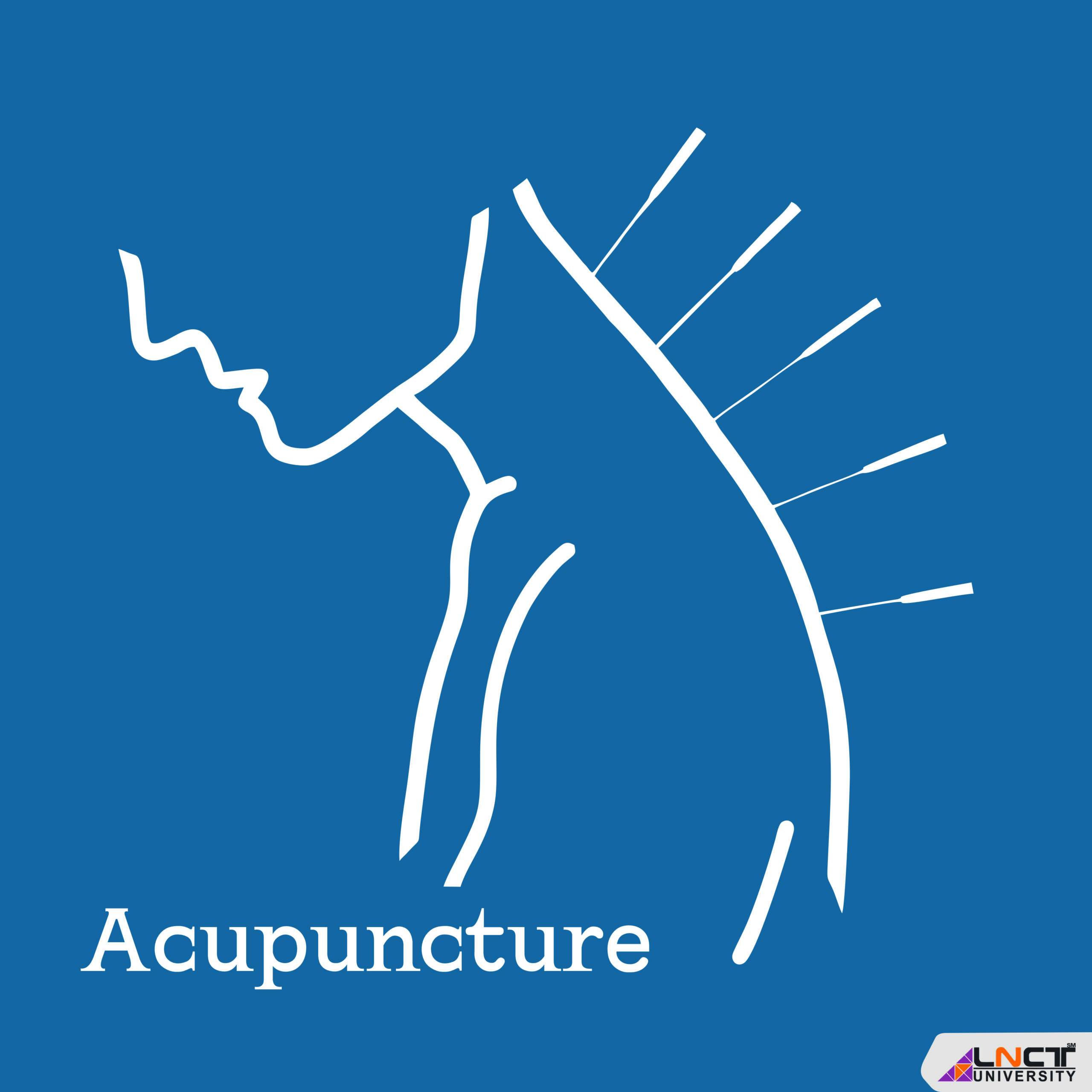Diploma in Acupuncture: