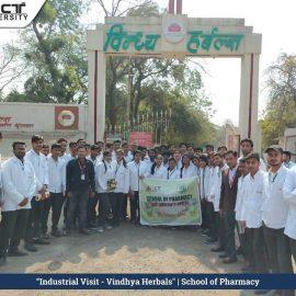 Industrial visit vindhya harbals1