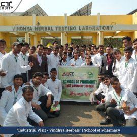 Industrial visit vindhya harbals2