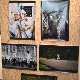 International Photography Exhibition (13)