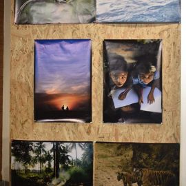 International Photography Exhibition (2)