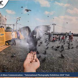 International Photography Exhibition (5)