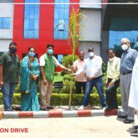 Tree plantation (1)